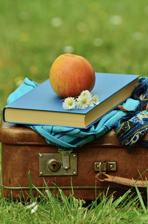 libro_valigia